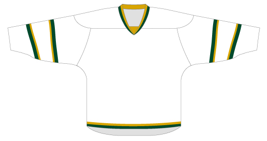 Dallas Stars Jerseys Image
